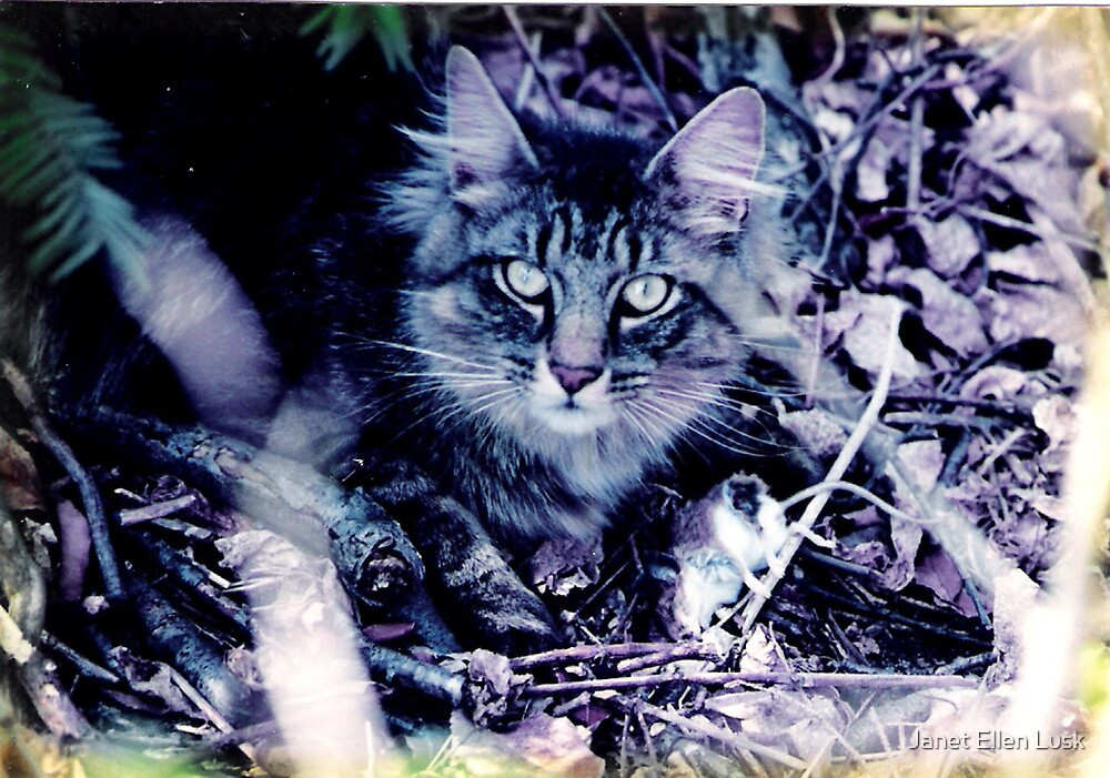 Chelsea with a Mouse by Janet Ellen Lusk