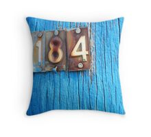 blue pole with numbers Throw Pillow