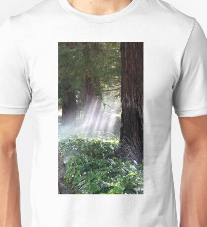 Mystical Moment with the Redwoods Unisex T-Shirt