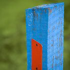 BLUEPOST by Ian Robertson