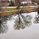 Reflections in the Rideau River by Shulie1