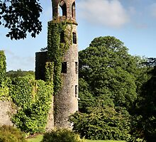 Blarney Castle - County Cork, Ireland by Kim Roper