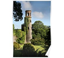 Blarney Castle - County Cork, Ireland Poster