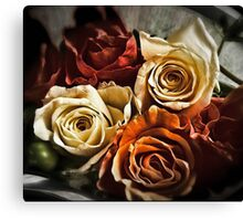 Roses are not always red... Canvas Print