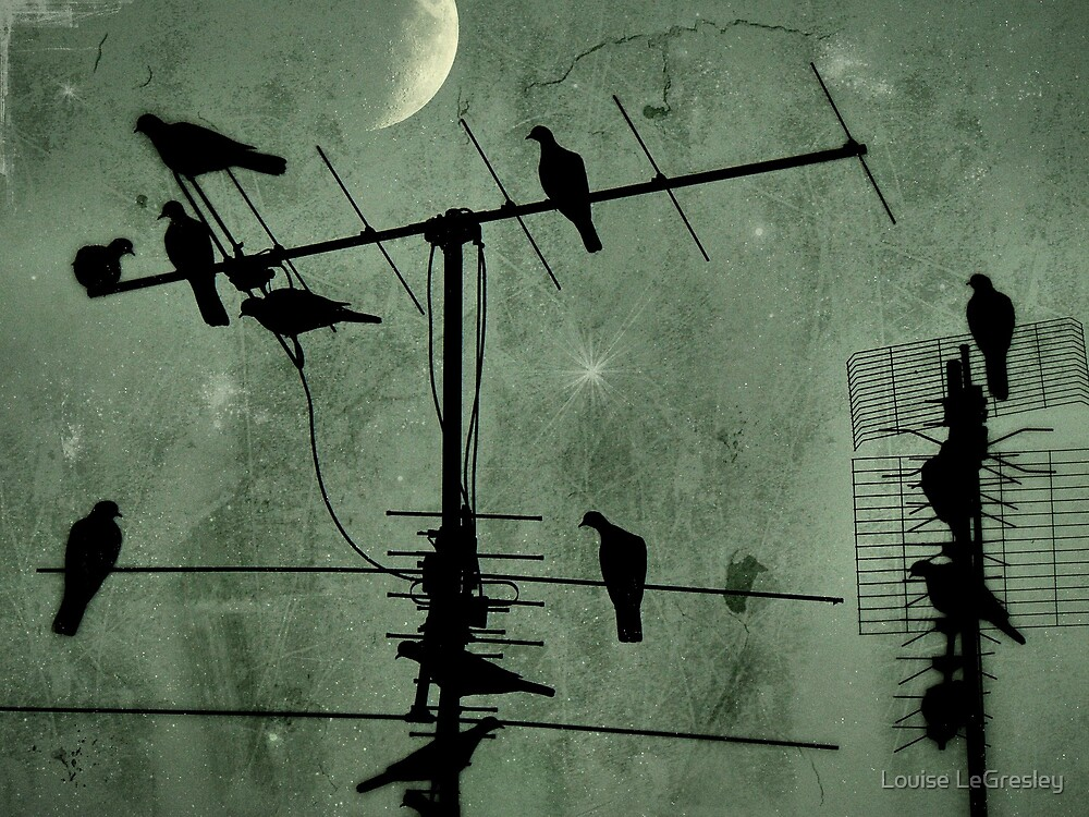 Flight of fantasy... by Louise LeGresley