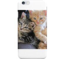 Lap Cats iPhone Case/Skin