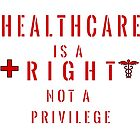Healthcare is a RIGHT not a privilege by 321Outright