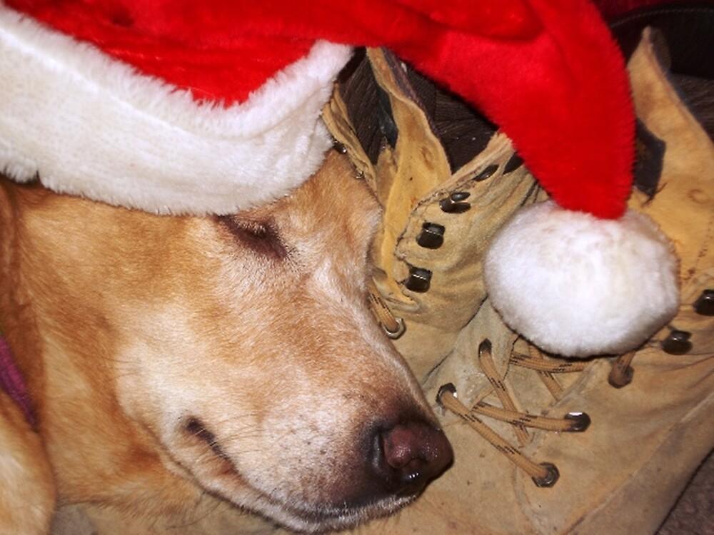 Santa's Loyal Friend by badbeeb