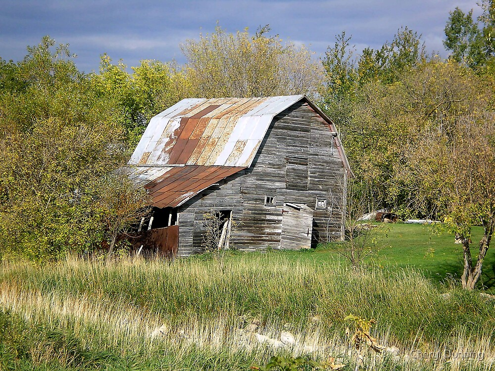 old barn by Cheryl Dunning