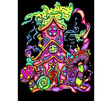 Gnome House Photographic Print