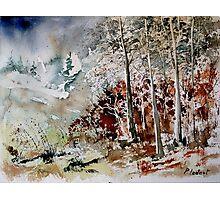watercolor 200307 Photographic Print
