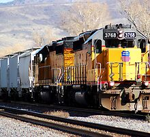 Union Pacific 3768 by Jess Fleming