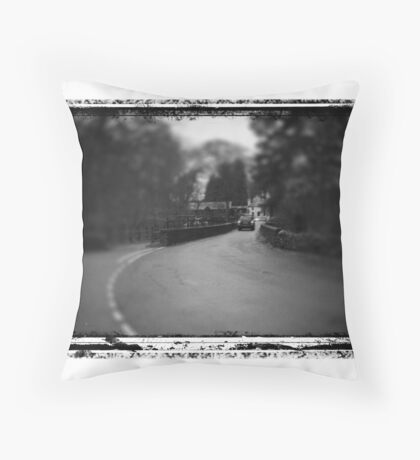 Road over the River Throw Pillow