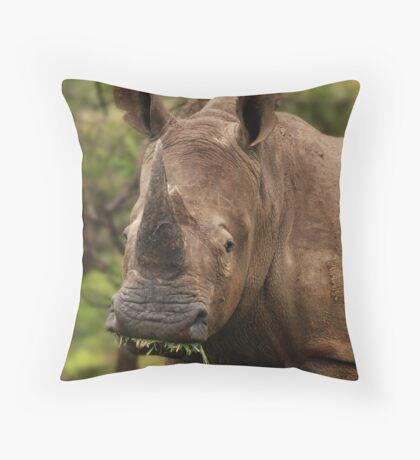Prehistoric beauty Throw Pillow