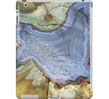 Colourful Agate iPad Case/Skin
