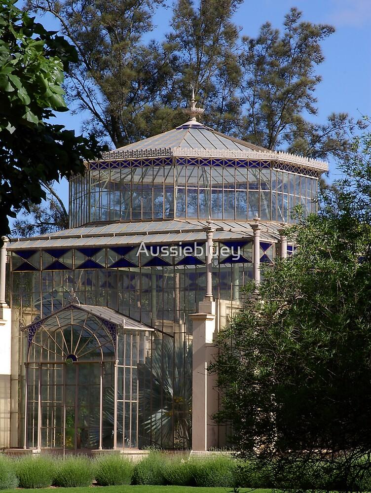 Glasshouse,2 by Aussiebluey