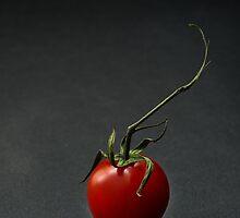 Cherry tomato over dark background by katiawhite