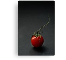 Cherry tomato over dark background Canvas Print