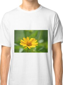 Yellow Blossoms Classic T-Shirt