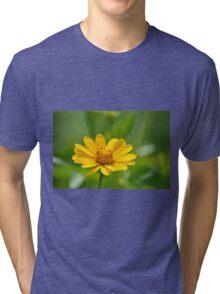 Yellow Blossoms Tri-blend T-Shirt