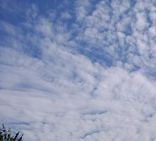 CLOUDS by melbolch