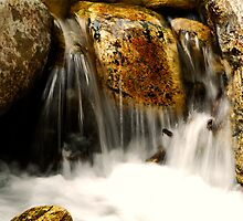 May the cool peace of a tranquil stream fill your Heart by J. D. Adsit