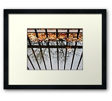 Puddles and Leaves Framed Print