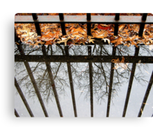 Puddles and Leaves Canvas Print
