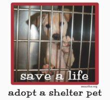 Save a Life by Samitha Hess
