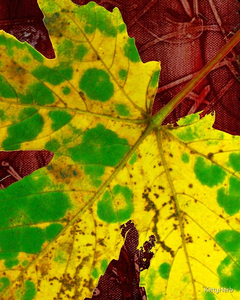 yellow leaf by KittyHerb
