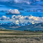 Springtime in the Rockies by Bryan D. Spellman
