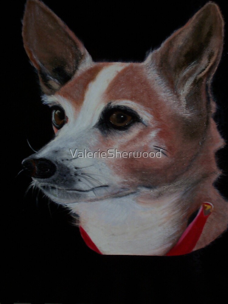 Bonny by ValerieSherwood