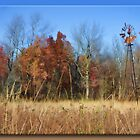 Fall on the Prairie by Sheryl Gerhard