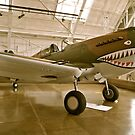 Flying Tiger P40 by Randall Robinson