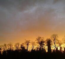 Autumn Sky by Andrew Bridge