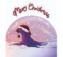 Antarctic Christmas Photographic Print