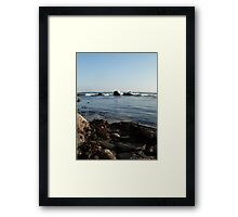Seaweed&Rocks Framed Print