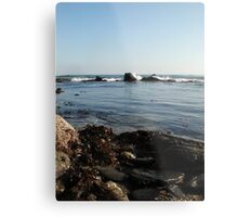 Seaweed&Rocks Metal Print