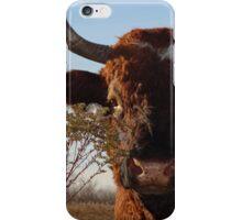 My friend Ferdinand iPhone Case/Skin