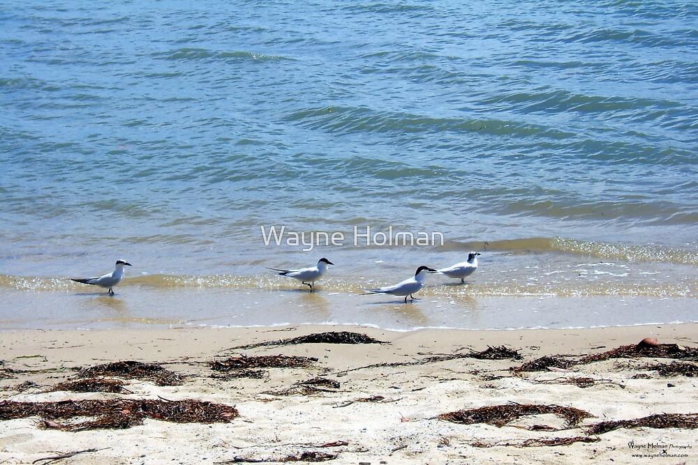 Beach Combing by Wayne Holman