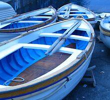 Paddle Boats by CynthiaC