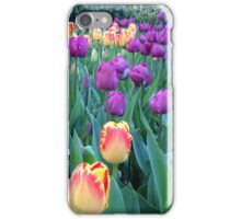 Tulips, Madison Square Park iPhone Case/Skin