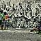 New Zealand Street Art
