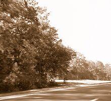 Winding Road by emma155