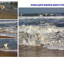 Girls Just Wanna Have Fun by Amedori