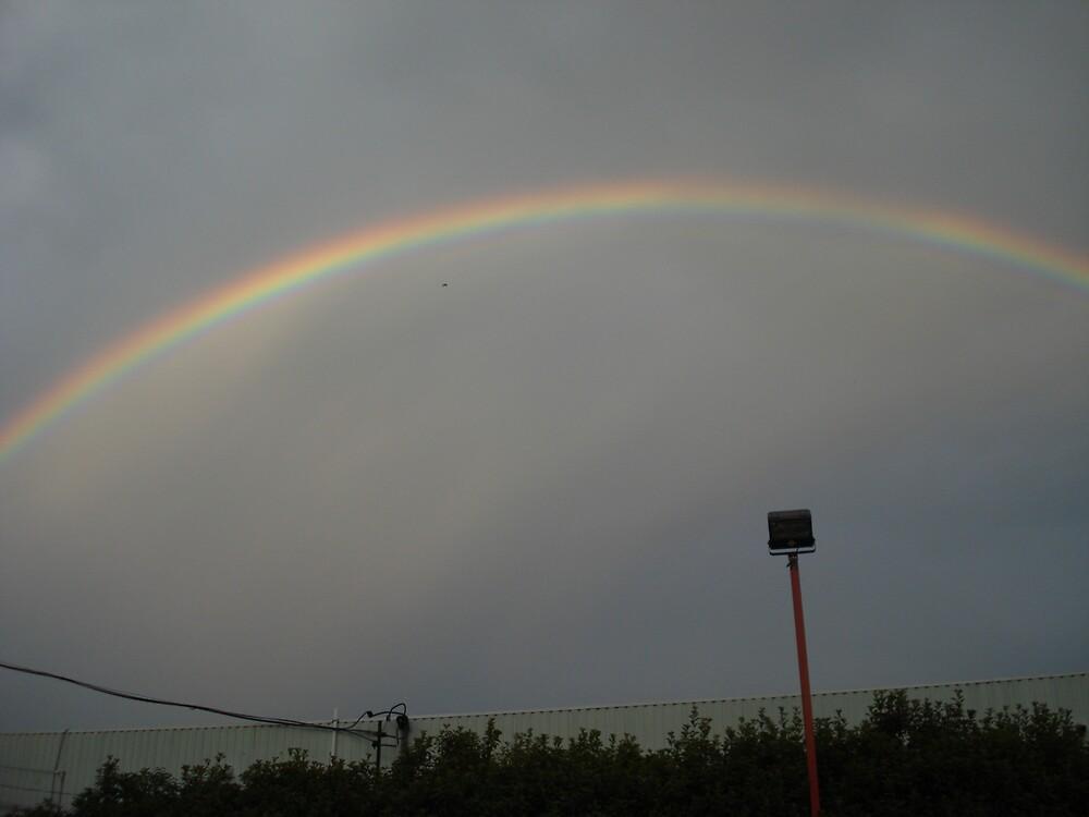Rainbow by beautifull8706