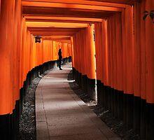 Fushimi Inari-taisha, Japan by Robyn Lakeman