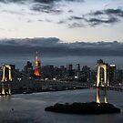 Tokyo city, Japan by Robyn Lakeman