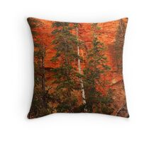 Bryce Canyon Wall Throw Pillow