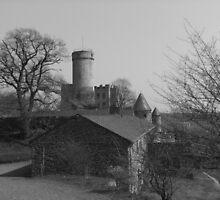 Burg Pyrmont by NicoleBPhotos